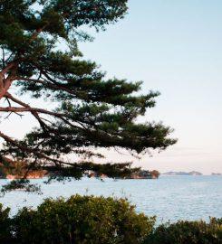 Matsushima (松島)