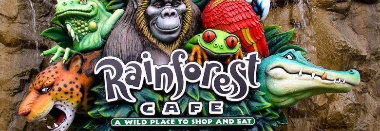 Rainforest Cafe (Disney World Animal Kingdom)